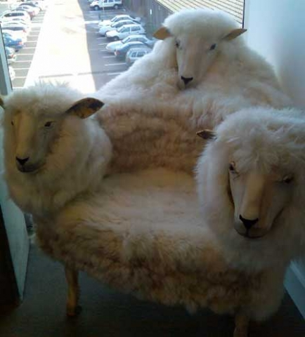 strange-chair2_rpoh4_48.jpg